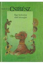 Csibész - Gaál Éva - Régikönyvek