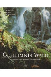 Geheimnis Wald - Winfried Bücking, Wilfried Ott, Wolfgang Püttmann - Régikönyvek
