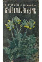 Gyógynövényeink - Giovannini Rudolf, Szathmáry Géza - Régikönyvek