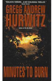Minutes to Burn - Gregg Andrew Hurwitz - Régikönyvek