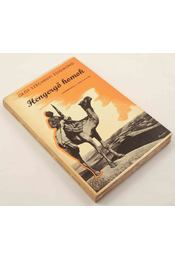 Hengergő homok - Gróf Széchenyi Zsigmond - Régikönyvek