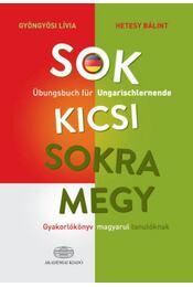 Sok kicsi sokra megy (német) - Gyakorlókönyv magyarul tanulóknak - Übungsbuch für Ungarischlernende - Gyöngyösi Lívia, Hetesy Bálint - Régikönyvek