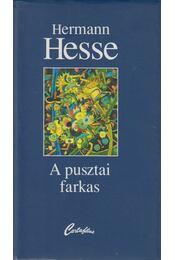 A pusztai farkas - Hermann Hesse - Régikönyvek
