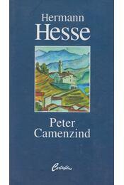 Peter Camenzind - Hermann Hesse - Régikönyvek