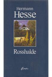 Rosshalde - Hermann Hesse - Régikönyvek