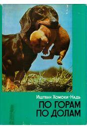 Hegyen-völgyön (orosz) - Homoki-Nagy István - Régikönyvek