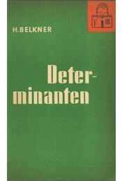 Determinanten - Horst Belkner Dr. - Régikönyvek