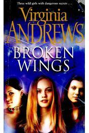Broken Wings - ANDREWS, VIRGINIA - Régikönyvek