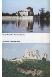 Hungary - Több szerző - Régikönyvek