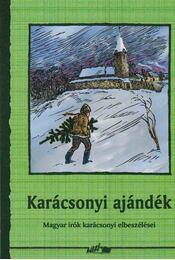 Karácsonyi ajándék - Hunyadi Csaba Zsolt - Régikönyvek