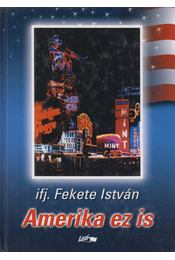 Amerika ez is - Ifj. Fekete István - Régikönyvek