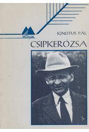 Csipkerózsa - Ignotus Pál - Régikönyvek