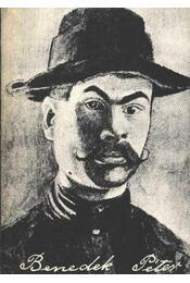 Benedek Péter - Ikvai Nándor - Régikönyvek