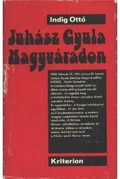 Juhász Gyula Nagyváradon (1908-1911) - Indig Ottó - Régikönyvek