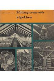 Zöldségtermesztés képekben - Jeszenszky Árpád - Régikönyvek