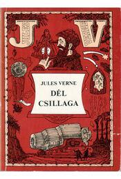 Dél csillaga - Jules Verne - Régikönyvek