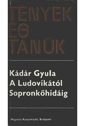 A Ludovikától Sopronkőhidáig I-II. kötet egyben - Kádár Gyula - Régikönyvek