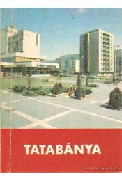 Tatabánya - Tapolcainé dr. Sáray Szabó Éva - Régikönyvek