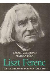 Liszt Ferenc élete képekben és dokumentumokban - László Zsigmond, Mátéka Béla - Régikönyvek