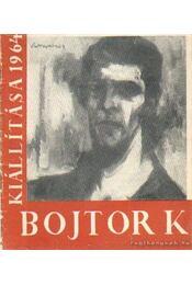 Bojtor Károly kiállítása 1964 - Régikönyvek