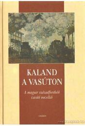 Kaland a vasúton - Szabó Pál Csaba - Régikönyvek