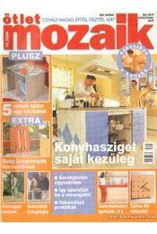 Ötlet Mozaik 2004. október 73. szám - Borbély Kata - Régikönyvek