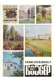 A Hódmezővásárhelyi Mezőgazdasági Gépgyártó és Szolgáltató Vállalat életéből - Régikönyvek