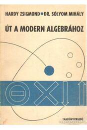 Út a modern algebráboz - Sólyom Mihály - Régikönyvek