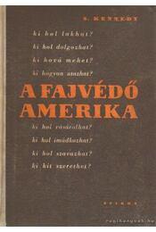 A fajvédő Amerika - Kennedy, S - Régikönyvek