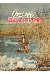 Őszi, téli Balaton - Móricz Béla - Régikönyvek
