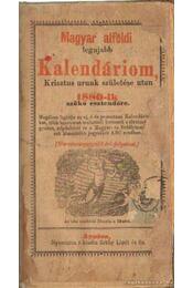 Magyar alföldi legujabb Kalendáriom, Krisztus urunk születése után 1880-ik szökő esztendőre - Régikönyvek