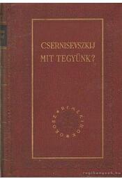 Mit tegyünk? - Csernisevszkij, N. G. - Régikönyvek