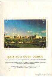 Baja 300 éves város - Régikönyvek