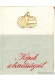Képek a barátságról (mini) - B. Fábri Magda - Régikönyvek