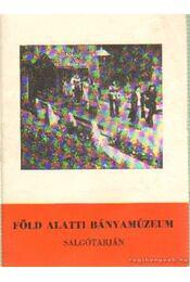 Föld alatti bányamúzeum - Salgótarján - Régikönyvek