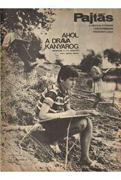Pajtás 1969. szeptember 37. szám - Vasvári Ferenc (főszerk.) - Régikönyvek