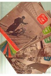 Magyar Horgász 1961. (hiányos) - Vigh József - Régikönyvek