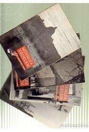 Műemlékvédelem 1981. (teljes) - Régikönyvek