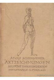 Aktzeichnungen aus fünf Jahrhunderten - Schinnerer, Adolf - Régikönyvek