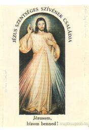 Jézus Szentséges szívének családja - Régikönyvek