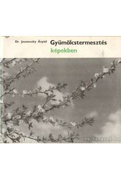Gyümölcstermesztés képekben - Dr. Jeszenszky Árpád - Régikönyvek