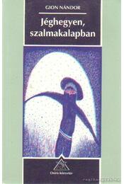 Jéghegyen, szalmakalapban - Gion Nándor - Régikönyvek