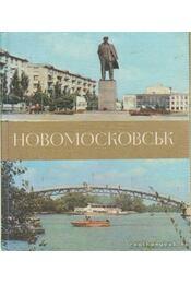 Novomoszkovszk (orosz nyelvű) - Goljak, M. A., Poljakova, Ny. I. - Régikönyvek