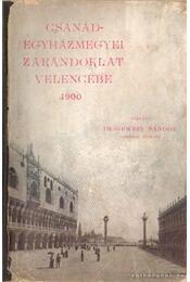 Csanádegyházmegyei zarándoklat Velencébe 1900 - Régikönyvek