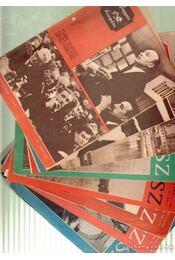 Magyar Horgász 1971. (hiányos) - Régikönyvek