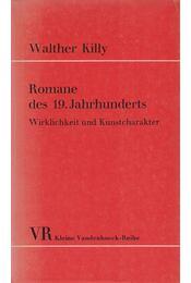 Romane des 19. Jahrhunderts - KILLY, WALTHER - Régikönyvek