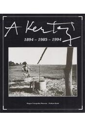 A. Kertész 1894 - 1985 - 1994 - Kolta Magdolna - Régikönyvek