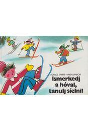 Ismerkedj a hóval, tanulj síelni! - Kovács Tamás, Nagy Sándor - Régikönyvek