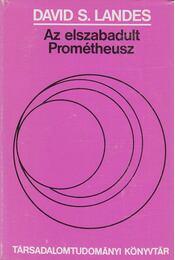 Az elszabadult Prométheusz - Landes, David S. - Régikönyvek