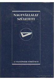 Nagyvállalat született - Lantos Antal - Régikönyvek